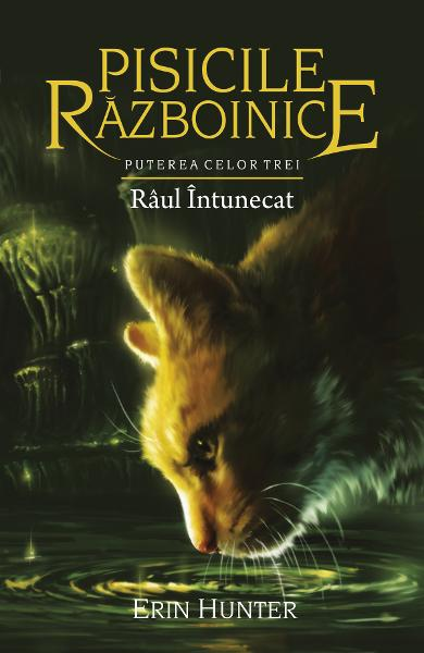 Imagine Pisicile Razboinice Vol.14: Raul Intunecat